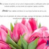 Feliz día de la Madre 2017