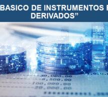 Seminario Básico de Instrumentos Financieros Derivados