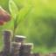 Panamá aspira a convertirse en el centro regional de las finanzas verdes.